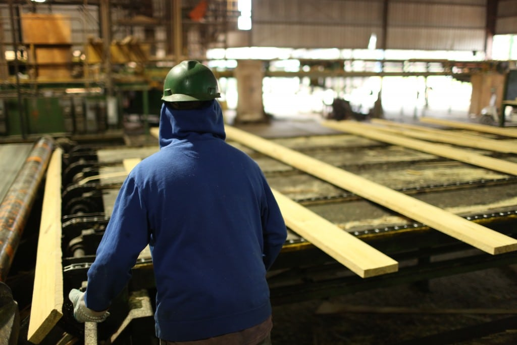 Sawmill employee working at Elliot Sawmilling