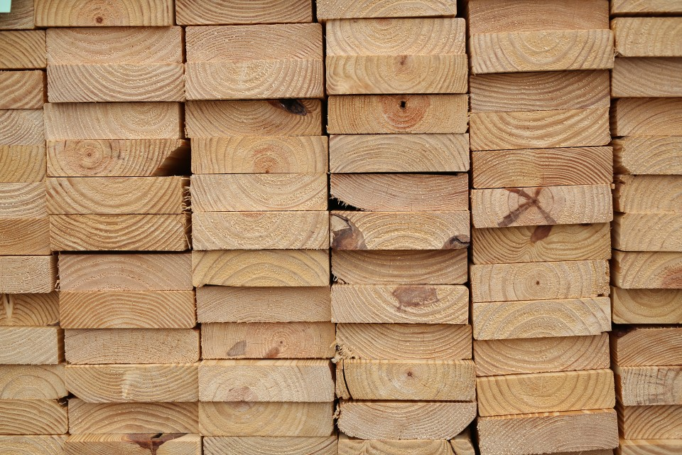treerings